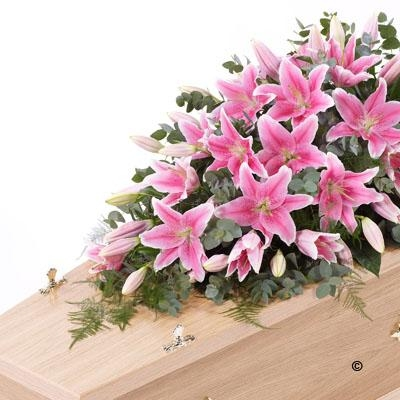Lily Casket Spray  pink *